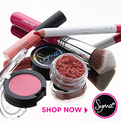 Shop my Favorite Brush & Tools